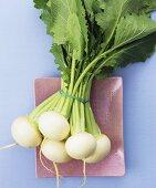 May turnips