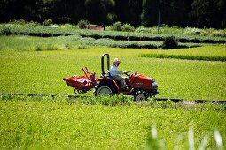 A tractor driving between rice paddies in Shizuoka, Japan