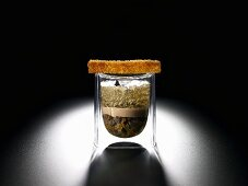 Jellied beef tea, goose liver and brioche (molecular gastronomy)