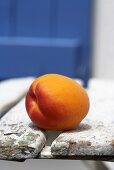 One apricot on garden chair