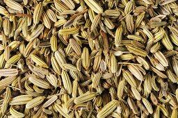 Fennel seeds (full-frame)