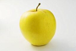 'James Grieve' apple