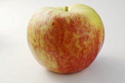 'Ruhm von Vierlanden' apple