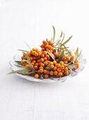 Sea buckthorn berries in dish