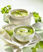 Cream of pea soup with mint and sour cream