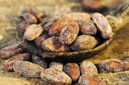 Cocoa beans on and beside wooden spoon (close-up)