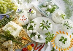 Various kinds of fresh cheese with herbs