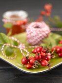 Rose hips on green plate with twine