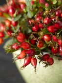 Rose hips in a green pot (close-up)