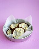 Chocolate biscuits with white chocolate icing