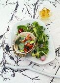 Sea spider and avocado salad