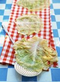 Blanched savoy cabbage leaves