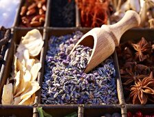 Dried lavender flowers with various spices in a seedling tray