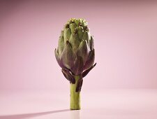 An artichoke with monk figures