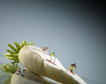Ski slope: White radish with miniature skiers