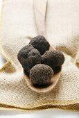 Black truffles (Chinese truffles) on wooden spoon on jute sack