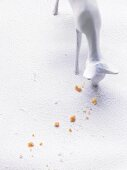 Deer ornament eating biscuit crumbs
