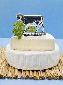 Camembert with cow Camembert label on straw mat