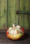 A Turk's Turban squash on wooden background