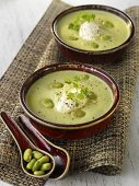 Cream of bean soup in two bowls
