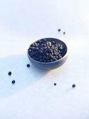 Tasmanian pepper (Tasmannia lanceolata)