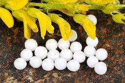 Yellow melilot (flowers and globuli (pellets))