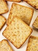 Whole wheat cream crackers
