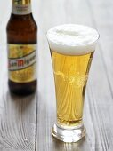 Light beer in glass in front of bottle