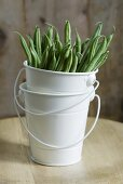 Green beans in stacked buckets