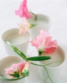 Vegan coconut milk soup in beakers decorated with flowers