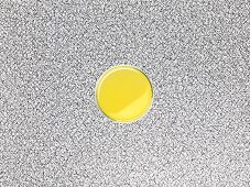 Argan oil in a bowl