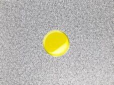 Cardamom oil in a bowl