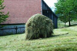 A haystack in a meadow