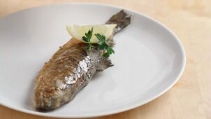 Trout being fried (German Voice Over)