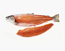 A Whole Uncooked Salmon, Fillet Removed