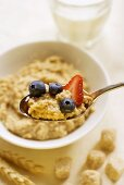 Spoonful of Oatmeal with Fruit; Bowl of Oatmeal