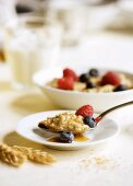 Spoonful of Oatmeal with Berries and Honey