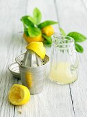 Fresh Squeezed Lemon Juice; Juicer and Pitcher