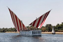 A ferry with red and white striped sails on the River Nile, Egypt with a view of the jungle