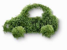 A car shaped out of cress