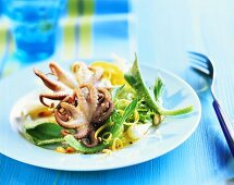 Octopus on salad