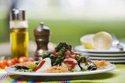 Greek salad with mozzarella