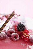 Fresh berries decorating a cream cake