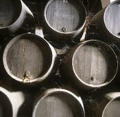 Wine barrels, Bodega Domecq, Jerez, Andalusia, Spain