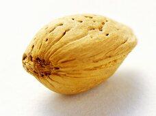 An almond
