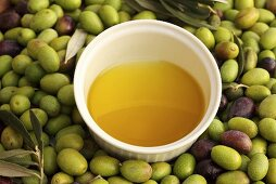 Cold-pressed olives oil in a bowl with olives, Perugia, Umbria, Italy
