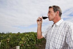 A man drinking red wine in a vineyard