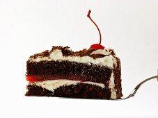 Piece of Black Forest cherry gateau on cake slice
