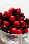 Fresh cranberries in glass cup (close-up)