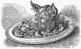 Pig's head (Illustration)